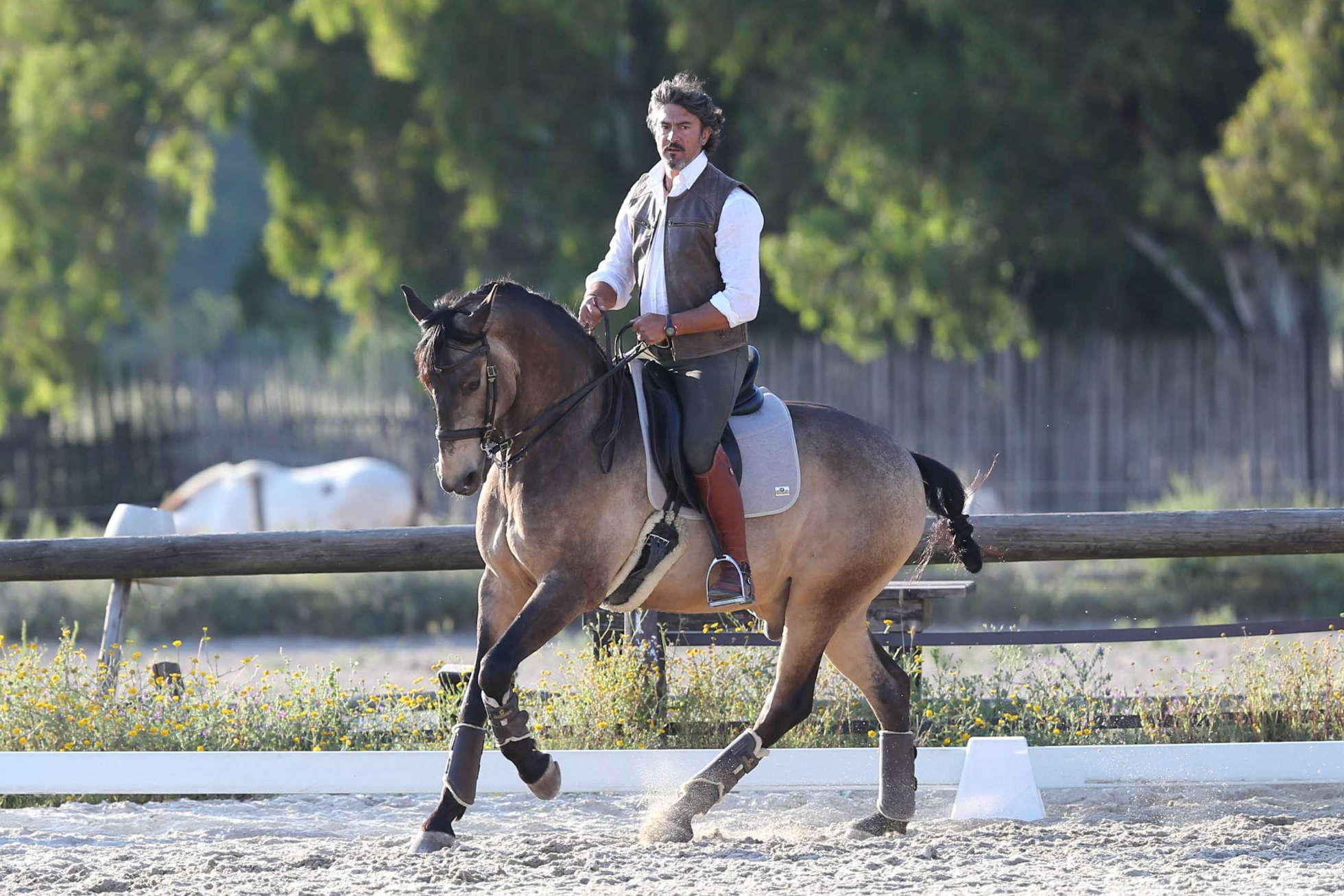 The magic between horse and rider